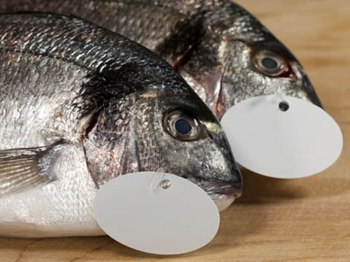 Fish Labels Debunked