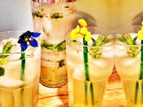 Homemade Minty Lemonade Recipe