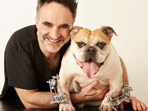 Noel Fitzpatrick and dog