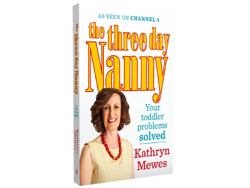 The Three Day Nanny Book