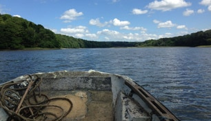 View from a boat on The Cleddau