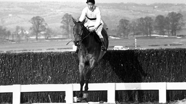 Arkle: The Legend Lives On