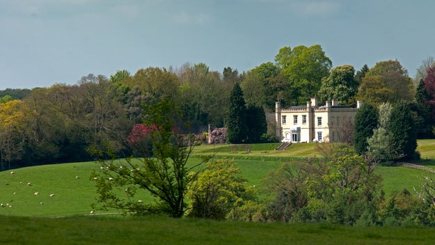 Simon Davis advises the owners of British stately homes on how to diversify and raise revenue, and so secure the future of their unique properties for generations to come