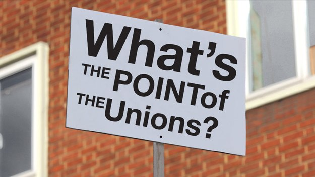 What's the Point of the Unions?