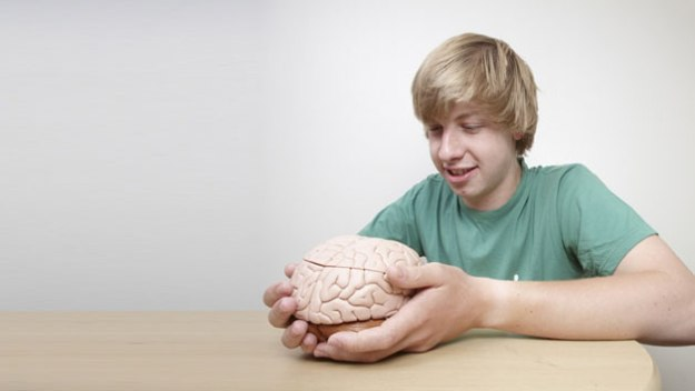 My New Brain