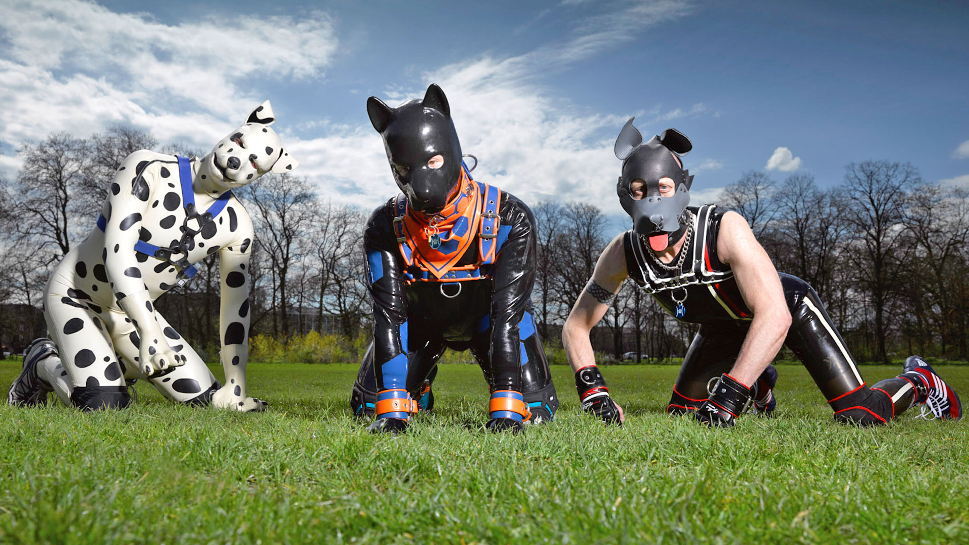 the secret life of the human pups