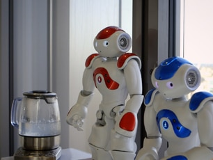 NAO Evolution V5 Robot