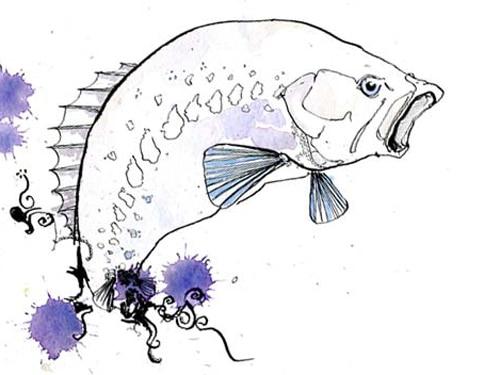 CJ Jackson's Fish