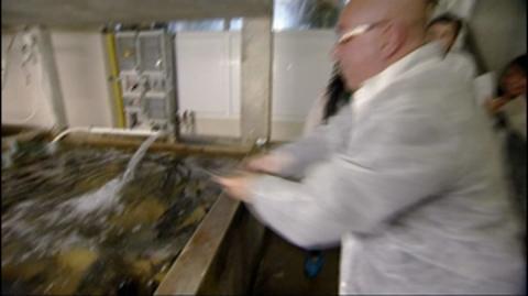 Riga: Fish Farm