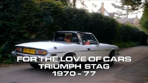 For the Love of the... Triumph Stag