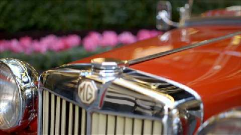 For the Love of the… MG TC