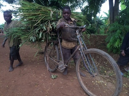 photo of a child with vegetation piled on an old bicycle