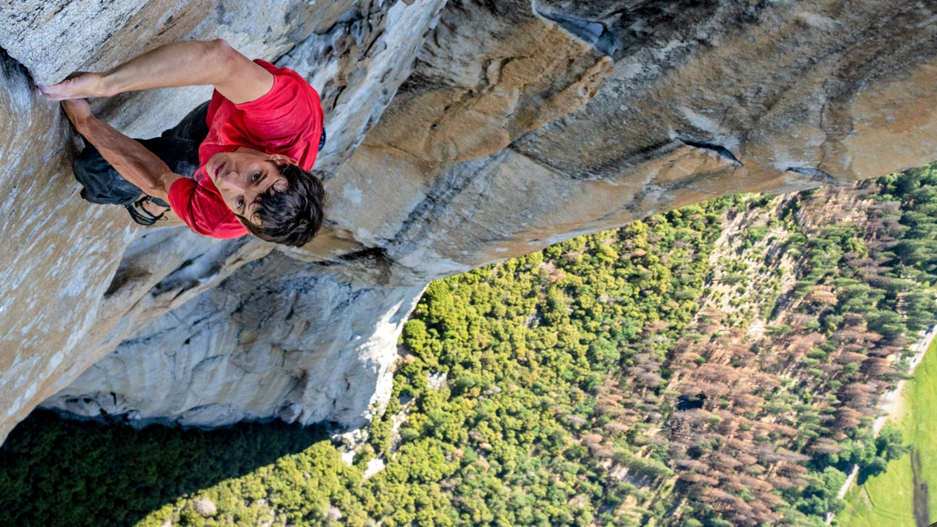 Image result for Free Solo""