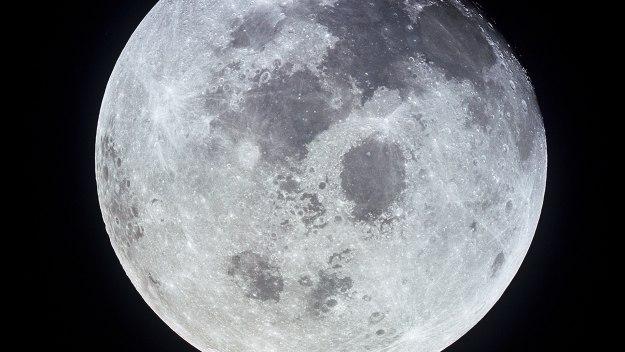 Moon Landing Live - Moon Landing Live: Update 2