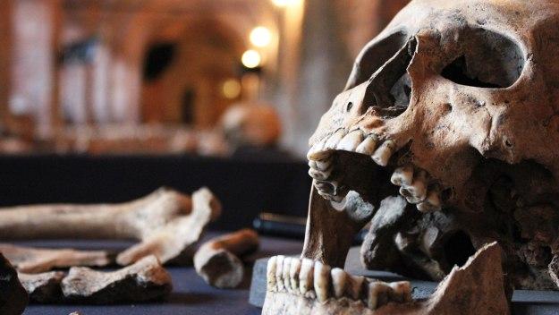 Return Of The Black Death: Secret… - Return Of The Black Death: Secret History