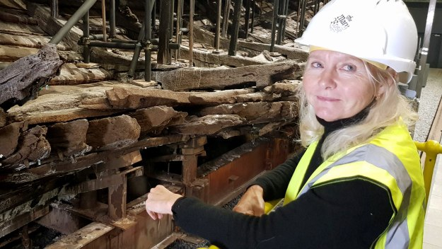 Skeletons Of The Mary Rose: The New Evidence - Skeletons Of The Mary Rose: The New Evidence