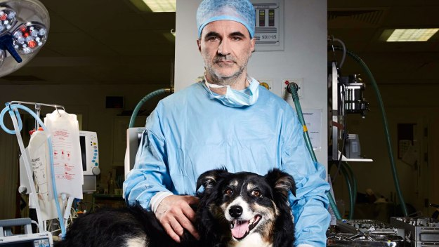 The Supervet - Bionic Specials: Flo & Izzy
