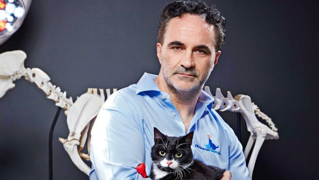 The Supervet - Bionic Specials: Peanut & Ard Ri